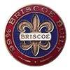 Logo Briscoe
